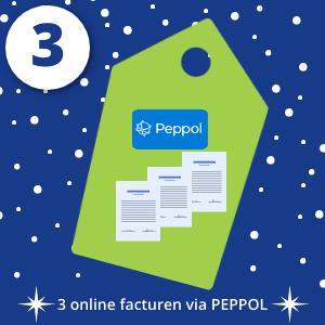 Dag 3 3 online facturen versturen via PEPPOL