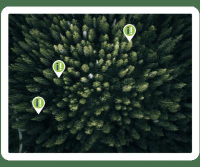 jouw eigen boom planten met informer